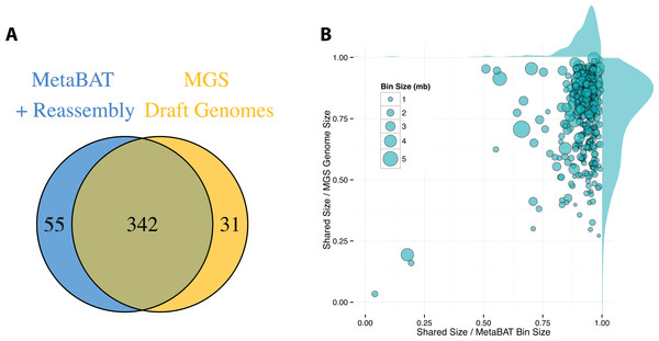 Comparison between MetaBAT bins after post-processing and MGS draft genomes from Nielsen et al.